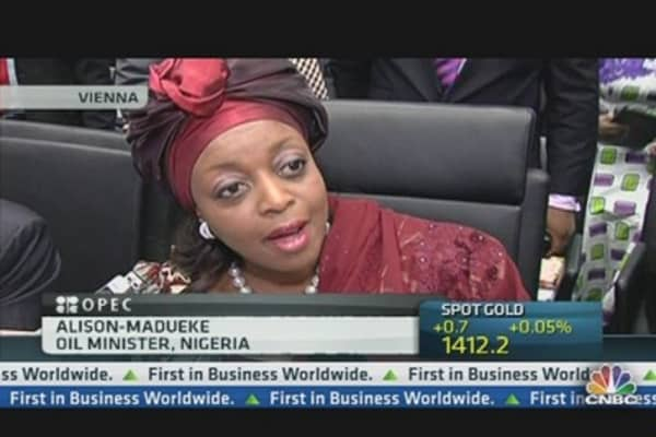 US Shale Oil 'Grave Concern': Nigeria oil minister
