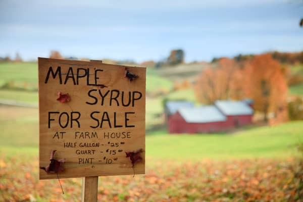 Sign for Maple Syrup in Woodstock, VT
