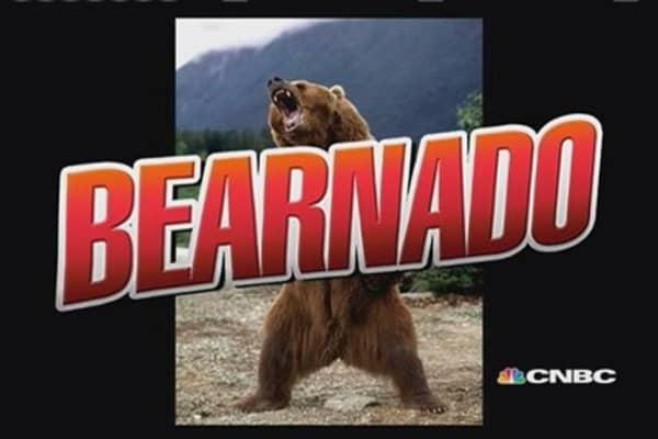 Beating back the bearnado