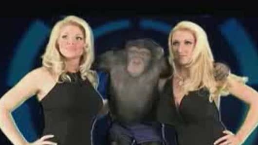 """Actresses"" and chimp."