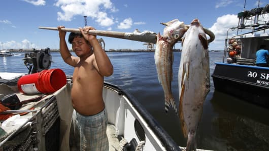 Placido Shim shows two fish he gaffed that were floating past his boat after a leaky pipe caused more than 230,000 gallons of molasses to ooze into the harbor and kill marine life.