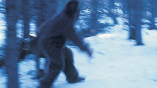 Bigfoot?!