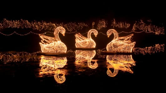 Swans decorated lights