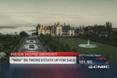 'Mini' Biltmore Estate up for sale