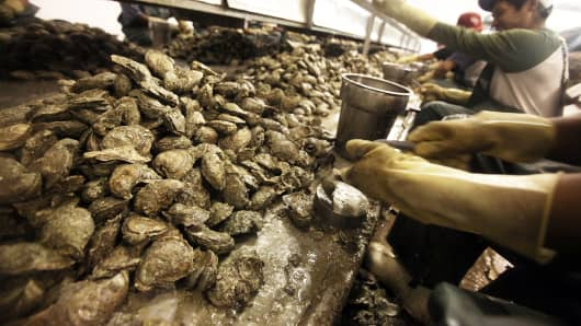 Workers shuck oysters at Crystal Seas Oysters April 15, 2011, in Pass Christian, Miss. The oyster industry was crippled by the BP oil spill.