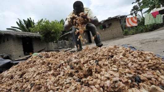 A farmer moves cocoa beans in Gonate, Cote d'Ivoire.