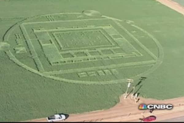 California's mysterious crop circle