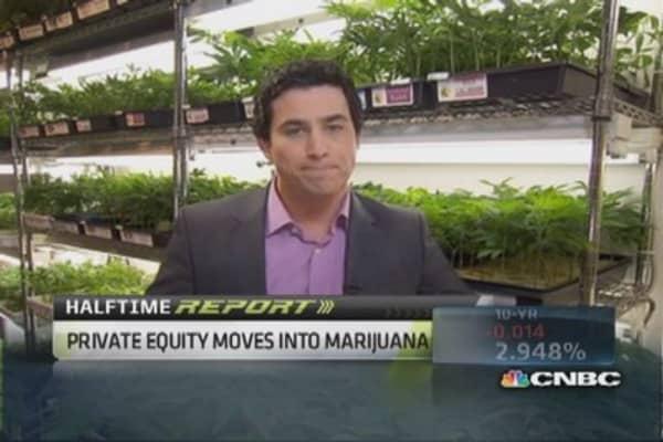 Tough business of marijuana