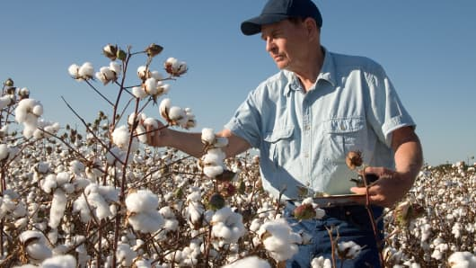 After peaking in the late '90s, use of U.S. mills that churn raw cotton fiber into spun yarn has been stable since 2008.