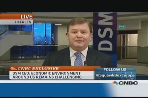No big acquisitions in 2014: DSM CEO