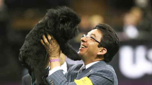 Dog handler Ernesto Lara hoists Banana Joe into the air after the Affenpincher won Best in Show at the 137th Westminster Kennel Club Dog Show on February 12, 2013 in New York City.