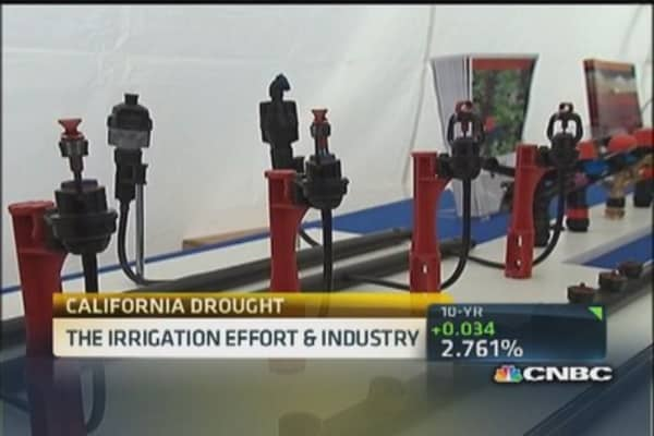 Cali's irrigation effort and industry