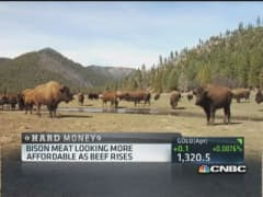 Bison meat market beefs up