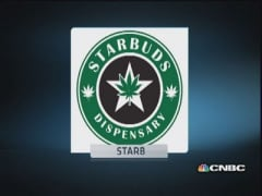 Bankers waiting for more concrete pot biz: Starbuds owner