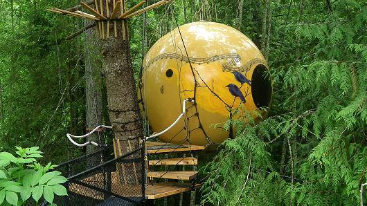 Treehouse Sphere exterior.