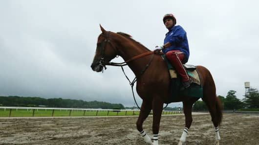 Kentucky Derby and Preakness winner California Chrome, with exercise rider Willie Delgado up, trains at Belmont Park on June 5, 2014 in Elmont, New York.
