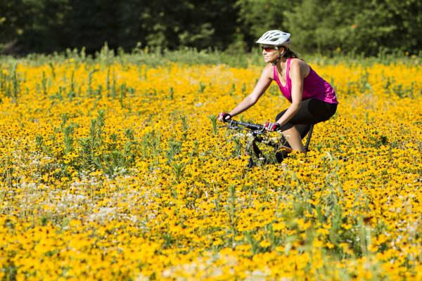 Mountain biking around the Lake Fayetteville trail in Fayetteville, Arkansas during the summer.