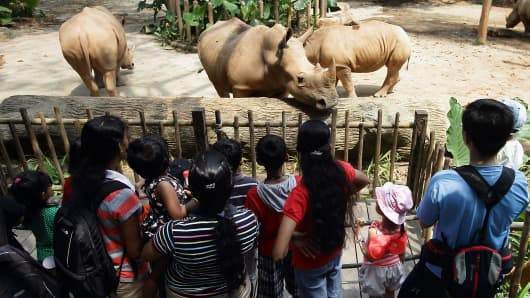 People visit the white rhinoceros enclosure at the Singapore Zoo.