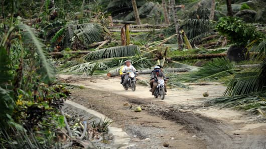 Motorists ride past fallen coconut trees in Compostela Valley in the Philippines on December 5, 2012, a day after Typhoon Bopha hit the province. At least 274 people were killed.