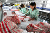 Workers in a clothing factory in Bozhou, Anhui province, China.