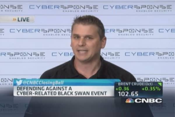 Cyberattack vulnerability landscape is massive: Pro