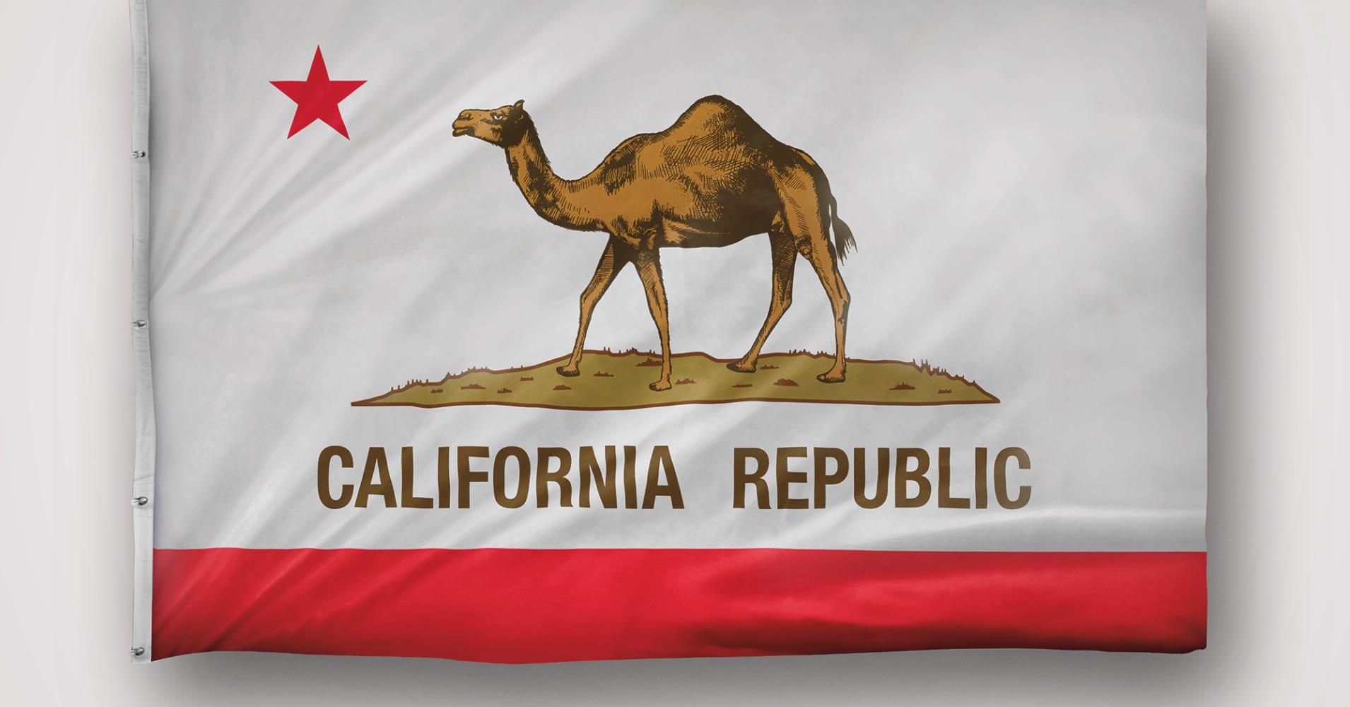 california drought so bad put camel on state flag group. Black Bedroom Furniture Sets. Home Design Ideas