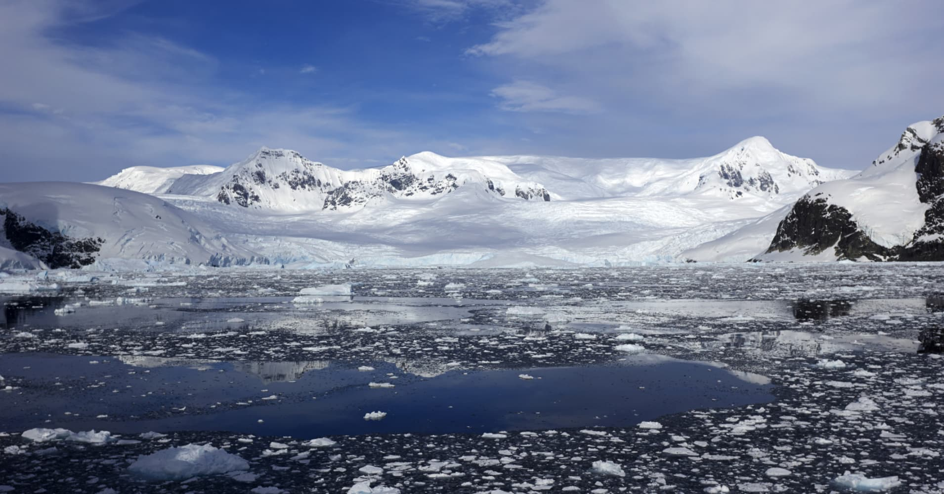 Antarctica turning green as climate change takes hold, says scientific study
