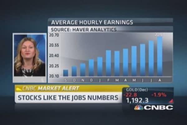 Jobs data: Pros & cons