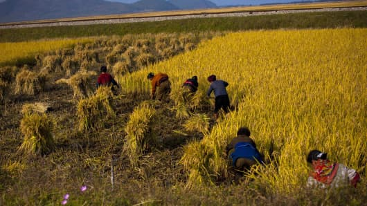 North Korean farmers work in a field along a highway outside the eastern coastal city of Wonsan, in Kangwon province, North Korea.