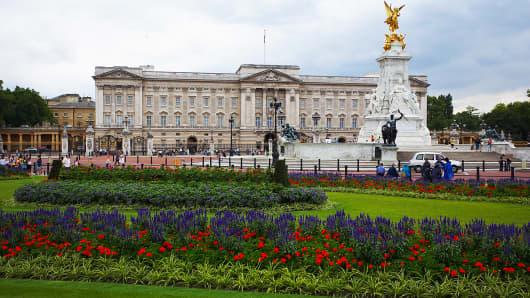 Magic Mushrooms Found In Queen Elizabeth S Garden At Buckingham Palace