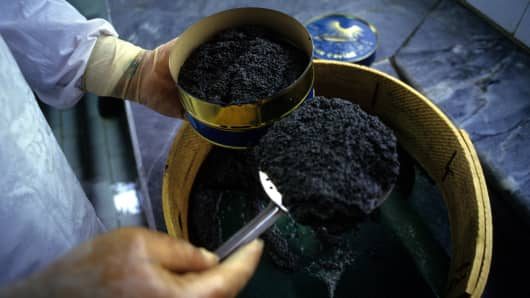 Filling caviar tins at the factory, Anzali port, Iran.