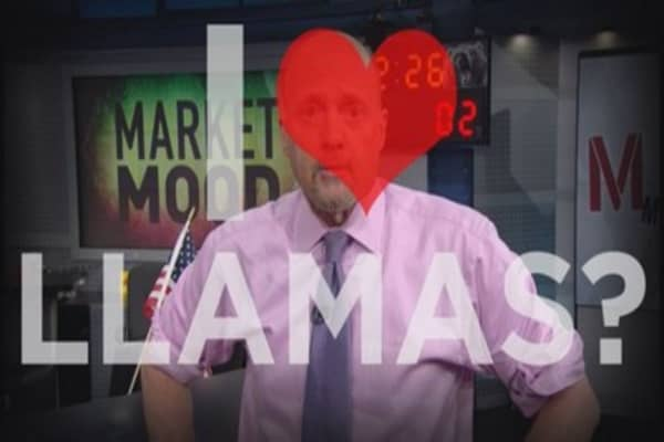 Cramer: This stock & llamas on the run