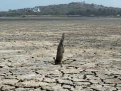 El Nino drought