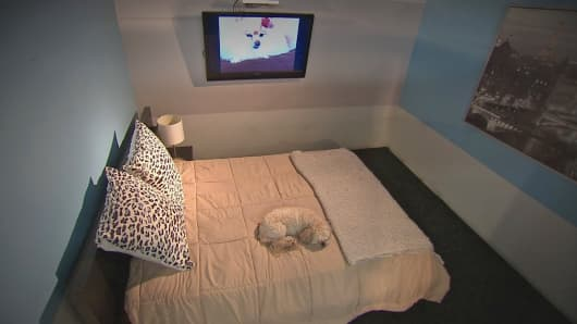 A doggie guest enjoys the $200 a night Uber Suite at D Pet Hotels Chelsea in New York City.