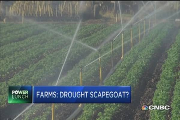 Cali drought: Farmers scapegoated?