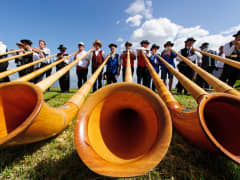 Alphorn players
