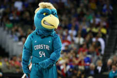 Chauncey the Chanticleer, the Coastal Carolina Chanticleers mascot.
