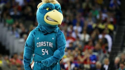 Chauncey the Chanticleer, the Coastal Carolina Chanticleers mascot.