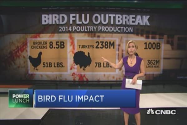 Bird flu impact by the numbers