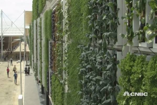 Is vertical farming the answer?