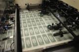U.S. dollar
