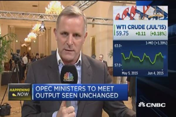 OPEC ministers meet in Vienna