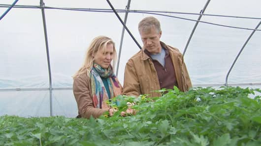 Trading the daily grind for the greenhouse: Robin and Jon McConaughy tend to plants at their Hopewell, NJ farm.