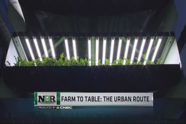 Farm to table: the urban route