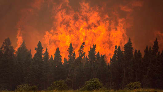 Flames from a wildfire approach trees on the edge of the airport in La Ronge, Saskatchewan, Canada, July 5, 2015.