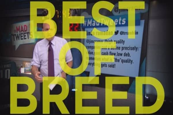 Cramer:  Detecting a best-of-breed company