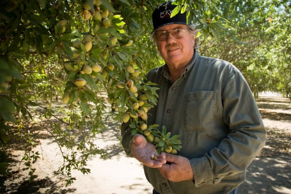 Tom Rogers is a third-generation almond farmer in the Central Valley. Despite the drought, almond prices per pound gained 24.4 percent to $3.21 per pound in the 2013 crop year.