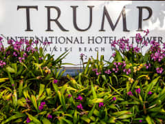 Tropical flowers and front entrance sign of Trump
