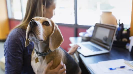 Woman with dog in office millennial