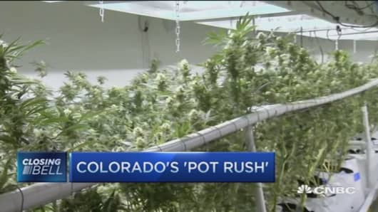 Colorado's 'Pot Rush'